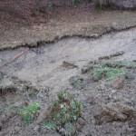 Na Kozjanskem ogromno dela za gasilce: poleg težav z vodo in vetrom še plazenje tal (dopolnjeno)