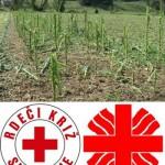 Škofijska Karitas in Rdeči križ zbirata pomoč za prizadete v neurju