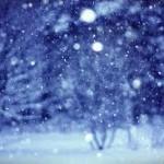 Zaradi napovedane obilne pošiljke snega jutri zaprte nekatere osnovne šole in vrtci na našem območju