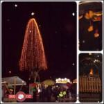 V Rogaški Slatini zasvetilo 30-metrsko božično drevo (video)