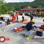 Vaja Železniška nesreča Rogatec 2013 (foto, video)