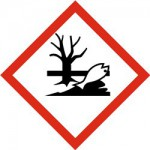 Onesnaženje potoka v Rogatcu