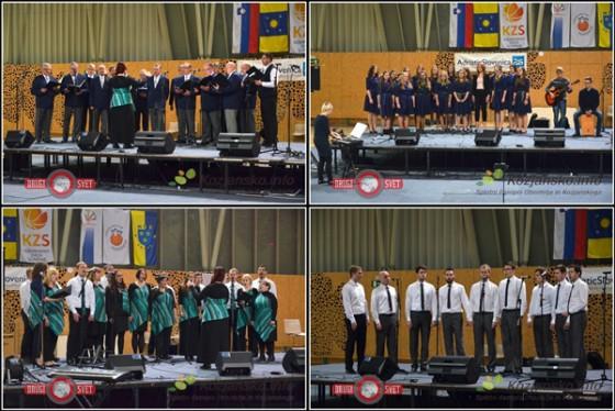 Klicu dobrodelnosti so se med drugim odzvali tudi MoPZ Terme Olimia, Dekliški cerkveni pevski zbor La Vita, MePZ Bistrica ob Stoli in VS Osti Jarej.