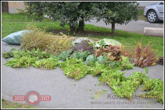 Butaro so tudi v Bistrici ob Sotli izdelovali iz različnih rastlin in zelenja.