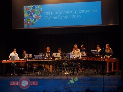 Tolkalna skupina Glasbene šole skladateljev Ipavcev Šentjur
