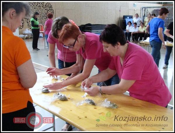 drzavno_tekmovanje_kmetic_podcetrtek_3