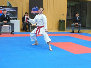 karate_avstrija_bor_2