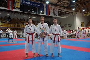 karate_kozje_junij_2015