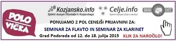 seminar-flavta-polsi-klik