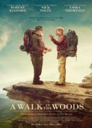 film12351-Sprehod-po-gozdu