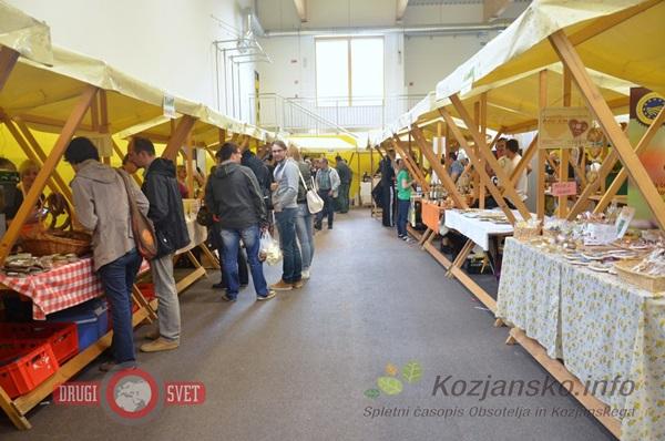 10_folklorni_festival_kozje_2016_5