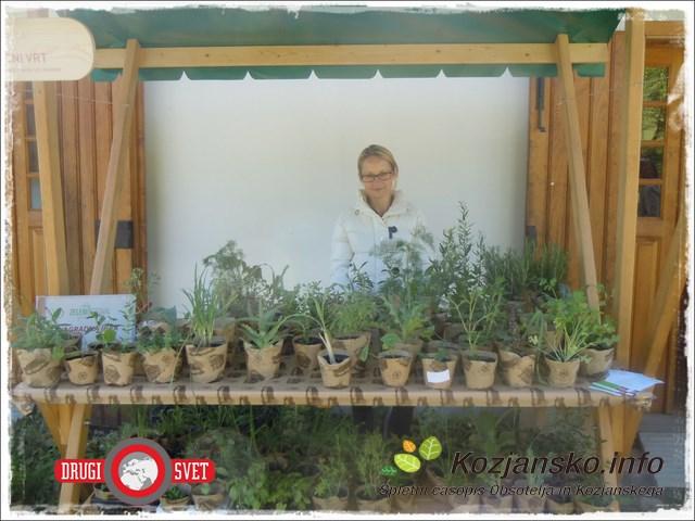 zelenifestival (4)