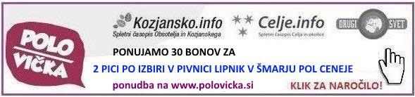pice-lipnik-polsi-klik