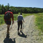 Kam na izlet ali pohod: Celje z bližnjo okolico