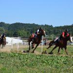 Konjske dirke v Imenem 2017 (foto)