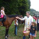 19. žegnanje konj v Gorici pri Slivnici 2017 (foto)