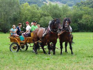zegnanje-konj-gorica-pri-slivnici-29-t