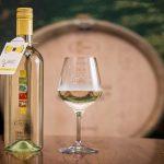 Hiša vin Emino tretjič s Pubecem v slovenski projekt promocije mladih vin
