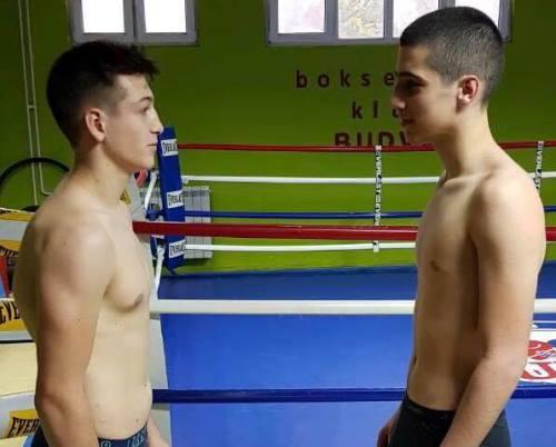 boks_gal_sepic_crna_gora_2017