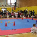 Karate klub, ki deluje v štirih krajih Kozjanskega, žanje uspehe