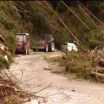 Začelo se je zbiranje pomoči za prizadete ob orkanskem vetru in močnem deževju