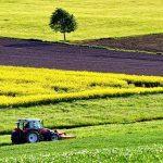 Občina Šmarje pri Jelšah bo letos za naložbe v kmetijstvo namenila 87 tisoč evrov