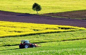 kmetijstvo-smarje