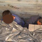 V tovornem vozilu so se skrivali štirje mladi Pakistanci
