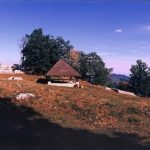 Najlepši izleti in pohodne poti Kozjanskega in Obsotelja: Šentjur in Šmarje pri Jelšah