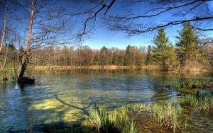 slivniski-ribniki