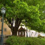 Ob Ipavčevi hiši bo zrasel paviljon