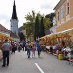 Kozjanski sejem 2018 (foto, video)