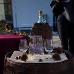 Pozdrav vinu v Šmarju pri Jelšah 2018 (foto, video)