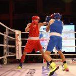 Črnogorska boksarska izkušnja