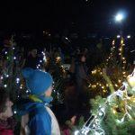 V Šmarju (uspešno) prižgali praznične lučke (foto, video)