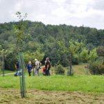 Slovenijo bo s primerom dobre prakse zastopala Občina Kozje