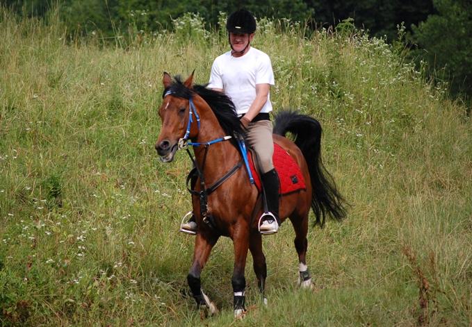konjeniski-turizem