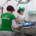 Veterinarska postaja Šmarje pri Jelšah se je predstavila v Pravi ideji na TV Slovenija