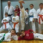 Karateisti Kozjanskega in Obsotelja osvojili osem medalj na pokalu Slovenije