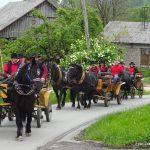 Konjenica konjerejskega društva Kozjanski furmani Šentjur (foto)