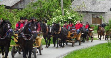 konjenica-kozjanski-furmani-sentjur-25