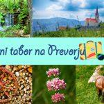 Odprte prijave za poletni tabor na Prevorju