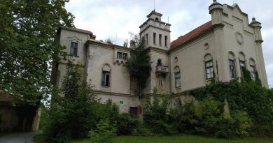 dvorec-jelsingrad