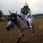 Konjske dirke v Imenem 2019 z bogato udeležbo (foto, video)