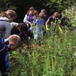 Mladi varuhi narave – naravoslovni tabor v Kozjanskem parku