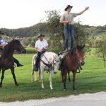 Žegnanje konj v Gorici pri Slivnici 2019 (foto)