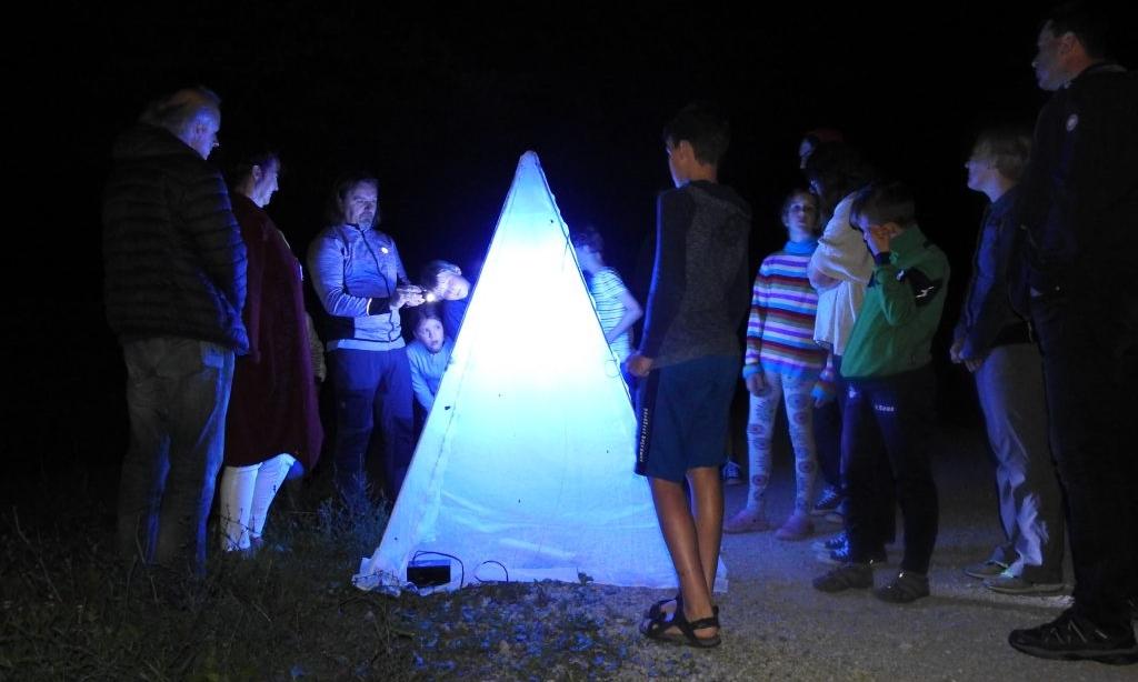 metulji-piramida