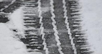 sneg-2019-ceste