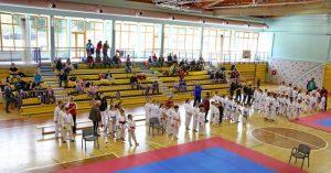 karate_rogaska_slatina_2020_marec_vsi