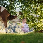 Mleko s hribovskih kmetij je del evropske identitete